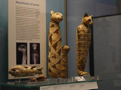 часть 2: Древняя Греция, Средний Восток, Египет (мумии)